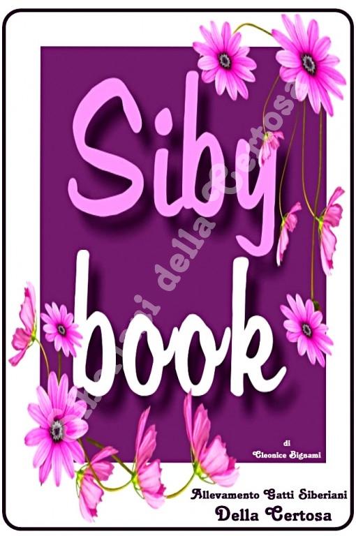 1sibybook